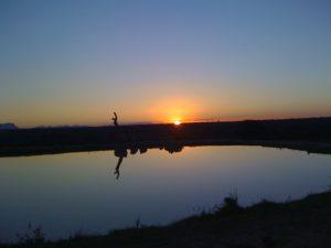 Kapama Reserve sunset